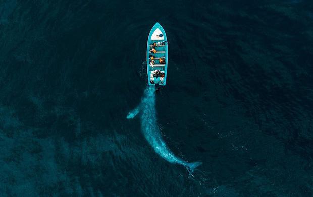 Hàng loạt tác phẩm của Việt Nam lọt top cuộc thi Drone Photo Awards 2020, tấm ảnh đạt giải nhất quá xuất sắc vì độ ảo diệu - Ảnh 4.