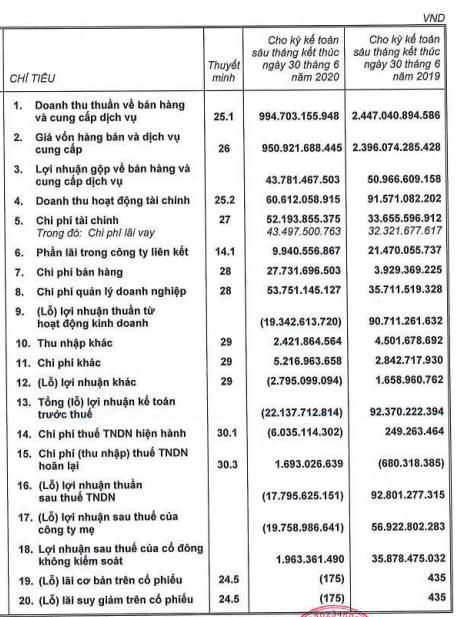 ThuDucHouse (TDH): Lỗ ròng tăng gấp 3 sau kiểm toán, tương đương lỗ 20 tỷ đồng sau nửa đầu năm - Ảnh 1.