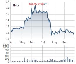 HAGL Agrico (HNG): Hưng Thắng Lợi Gia Lai bán ra 49,5 triệu cổ phần - Ảnh 1.