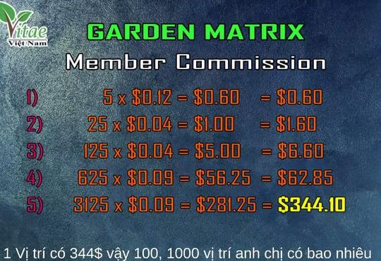 Xuất hiện MXH mới: Lấy tiền quảng cáo trả cho người dùng, góp 200 USD thu về 28.000 USD/tháng, không làm mà vẫn có ăn?  - Ảnh 4.