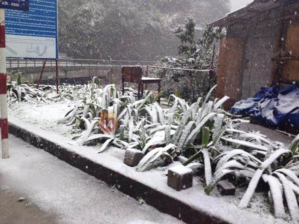 Nhiệt độ Sa Pa xuống dưới 0 độ C, có mưa và tất cả đều đang trông chờ tuyết rơi như 7 năm trước - Ảnh 4.