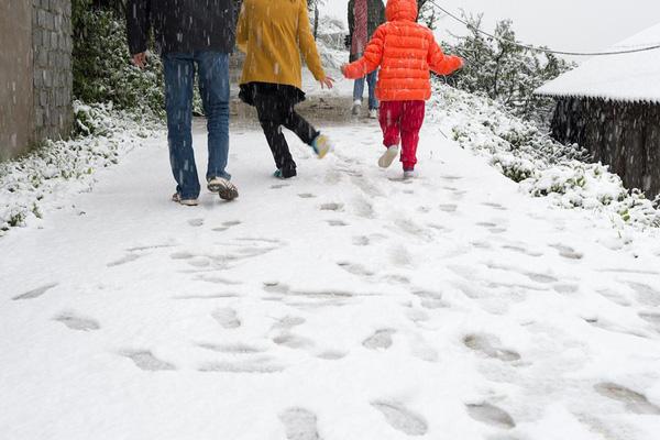 Nhiệt độ Sa Pa xuống dưới 0 độ C, có mưa và tất cả đều đang trông chờ tuyết rơi như 7 năm trước - Ảnh 8.