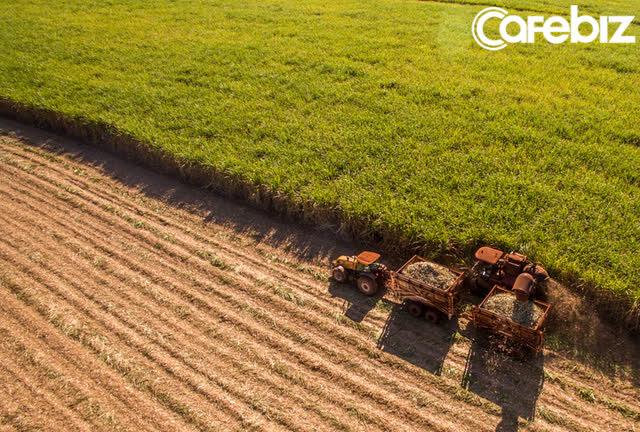 """Bill Gates chính là """"địa chủ"""" lớn nhất tại Mỹ: Sở hữu 98.000 hecta đất nông nghiệp, trải dài khắp 18 bang  - Ảnh 1."""