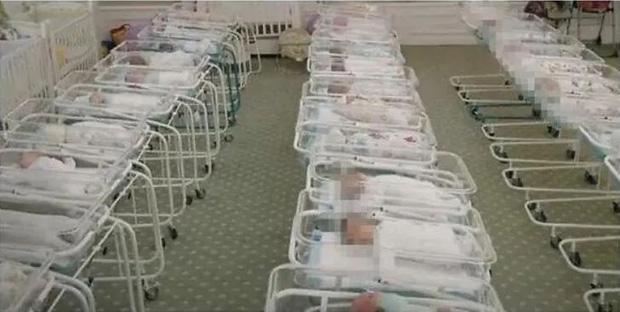 Sự thật về ngành công nghiệp mang thai hộ chuyên nghiệp ở Mỹ và sự tồn tại ngang nhiên của 400 cơ sở đẻ thuê chui tại Trung Quốc - Ảnh 3.