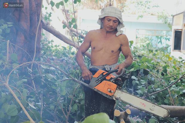 Gặp vua khỉ U50 ở miền Tây: 27 năm thích leo trèo, dù bị ong chích, kiến đốt đến phát sốt vẫn thấy bình thường - Ảnh 13.