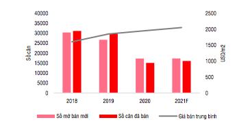 Giá nhà 2021 tăng do chủ đầu tư găm hàng kìm nguồn cung? - Ảnh 1.