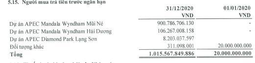 Đầu tư IDJ Việt Nam báo lãi quý 4/2020 cao gấp 4 lần cùng kỳ - Ảnh 3.
