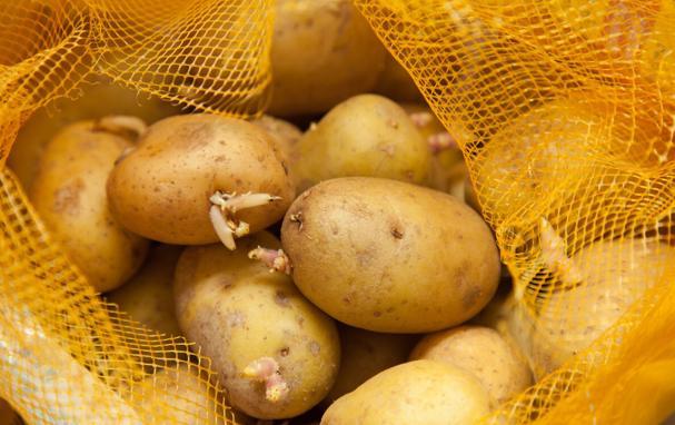 3 món rau củ quen thuộc nhưng hại lá gan nghiêm trọng nhất, riêng loại thứ nhất có nhiều người Việt đang ăn mỗi ngày - Ảnh 3.