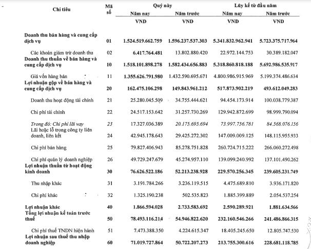 Tổng công ty Dược Việt Nam (DVN) báo lãi 232 tỷ đồng trước thuế, hoàn thành 91% kế hoạch năm - Ảnh 1.