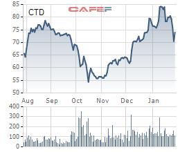 Coteccons (CTD): Thêm 1 quý chi phí tăng đột biến, cả năm LNTT suýt soát kế hoạch với 589 tỷ đồng - Ảnh 2.