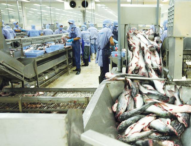 Việt Nam đặt mục tiêu dẫn đầu thế giới về sản xuất và xuất khẩu thủy sản - Ảnh 1.