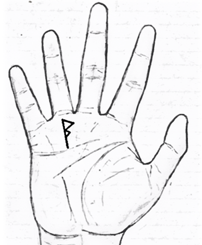 Nếu lòng bàn tay có một trong những dấu hiệu sau, cuộc đời sớm muộn cũng thăng hạng - Ảnh 2.