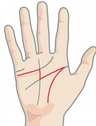 Nếu lòng bàn tay có một trong những dấu hiệu sau, cuộc đời sớm muộn cũng thăng hạng - Ảnh 6.