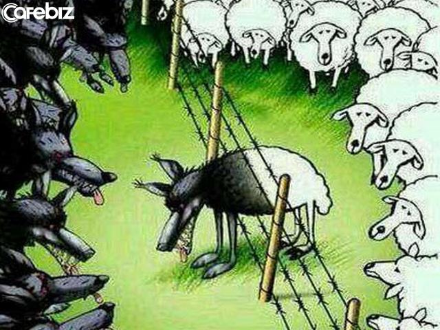 Chim ưng sống trong chuồng gà sẽ mất đi bản lĩnh bay cao; sói sống lẫn với cừu sẽ mất đi bản năng bá chủ: Bạn là ai không quan trọng bằng việc bạn ở cùng ai! - Ảnh 2.
