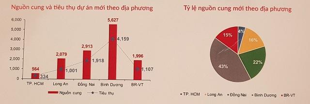 Vùng phụ cận TP HCM 'chiếm sóng' thị trường BĐS 2020 - Ảnh 1.