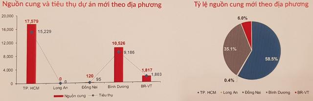 Vùng phụ cận TP HCM 'chiếm sóng' thị trường BĐS 2020 - Ảnh 2.