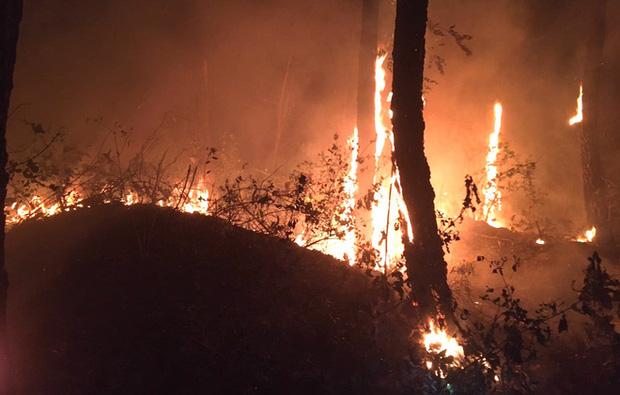 Đêm lạnh giá, cả trăm người lên dập đám cháy lớn bốc ngùn ngụt, cứu rừng thông - Ảnh 1.