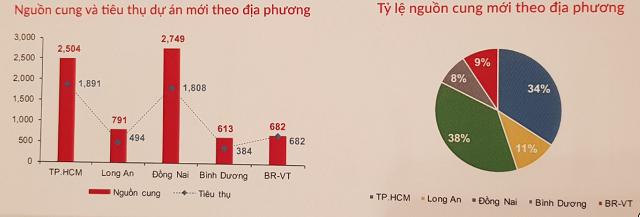 Vùng phụ cận TP HCM 'chiếm sóng' thị trường BĐS 2020 - Ảnh 3.