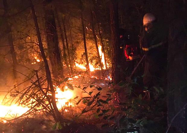 Đêm lạnh giá, cả trăm người lên dập đám cháy lớn bốc ngùn ngụt, cứu rừng thông - Ảnh 4.