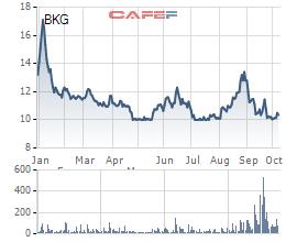 Đầu tư BKG sắp họp ĐHĐCĐ bất thường, trình phương án phát hành riêng lẻ 30 triệu cổ phiếu tăng vốn điều lệ gần gấp đôi - Ảnh 2.