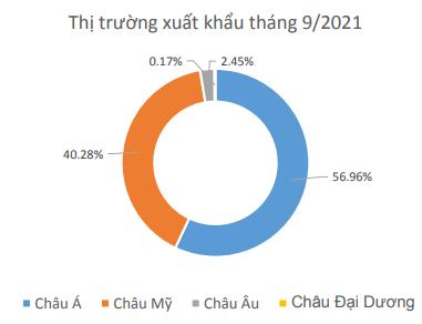 Dệt may Thành Công (TCM) báo lỗ tháng thứ 2 liên tiếp, 9 tháng hoàn thành chưa tới 40% mục tiêu lợi nhuận cả năm 2021 - Ảnh 3.