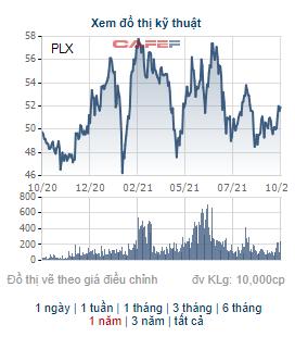 Bán cổ phiếu quỹ, không ít doanh nghiệp thu về trăm, nghìn tỷ đồng như VHM, STB, KDH, NKG - Ảnh 5.