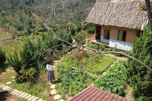Mắc kẹt tại Đà Lạt vì dịch, cô gái quyết định xuống tiền mua đất làm farmstay nhưng không ngờ dính phải đất quy hoạch - Ảnh 1.