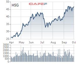 Thị giá tăng mạnh, Phó Tổng giám đốc Hoa Sen muốn bán 400.000 cổ phiếu HSG - Ảnh 1.