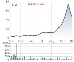 Louis Capital (TGG) tạm hoãn phương án phát hành 30 triệu cổ phiếu, tổ chức họp ĐHĐCĐ bất thường lần 2/2021 - Ảnh 2.