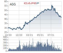Bất động sản An Gia (AGG) thông qua triển khai phương án phát hành cổ phiếu trả cổ tức và chào bán cho cổ đông hiện hữu tổng tỷ lệ 110% - Ảnh 1.