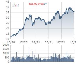 Hoàn tất quyết toán cổ phần hóa, Vietnam Rubber Group (GVR) được hoàn trả 132 tỷ đồng - Ảnh 2.