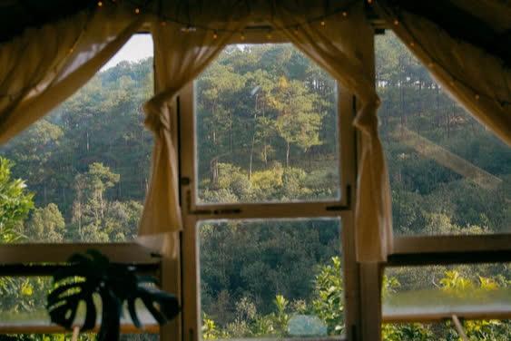 """Bỏ phố về rừng thuê 3000m2 đất làm homestay, chàng trai 9X nhận ra: """"Hoá ra đời không như mơ"""" - Ảnh 4."""
