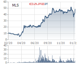 Năm 2020 đại thắng của Chăn nuôi Mitraco (MLS): Cổ phiếu tăng gấp 4 lần, lần đầu trong lịch sử lãi trên 100 tỷ đồng, EPS 23.889 đồng - Ảnh 2.