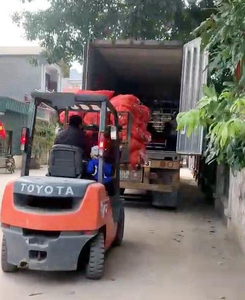 Hải Dương xuất bán 48 tấn cà rốt trong ngày mùng 1 Tết - Ảnh 1.