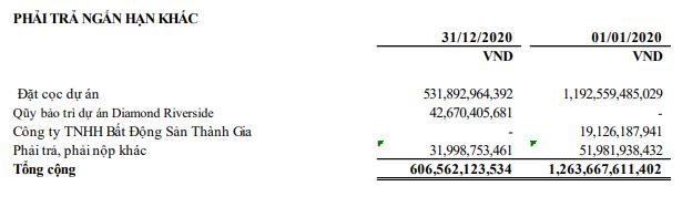 Năm Bảy Bảy (NBB): Quý 4 lãi 182 tỷ đồng, cao gấp 53 lần cùng kỳ - Ảnh 2.