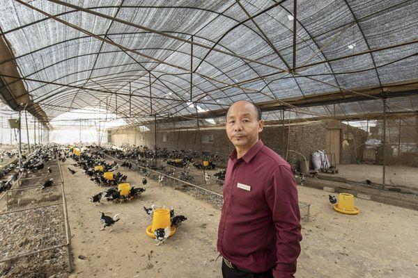 Chạy ăn cho 1,4 tỷ người, các gã khổng lồ thương mại điện tử Trung Quốc gia nhập cuộc chiến chống khủng hoảng lương thực rình rập - Ảnh 2.