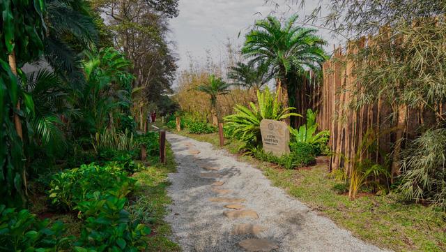 Vườn Zen gần 1ha trong tổ hợp BĐS của ông Đặng Lê Nguyên Vũ vừa khai trương: Xây theo kiến trúc chữa lành Thân – Tâm – Trí, thu vé vào cổng bằng… cây  - Ảnh 2.