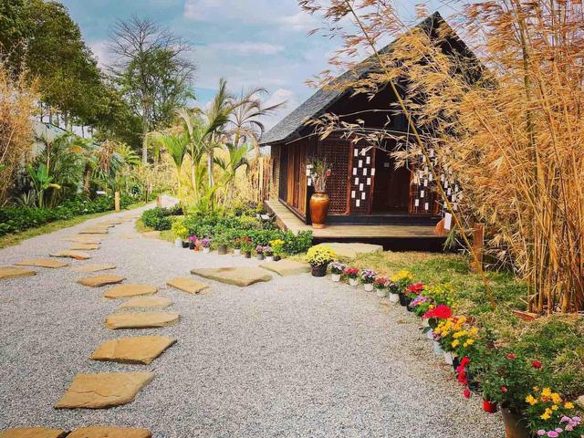 Vườn Zen gần 1ha trong tổ hợp BĐS của ông Đặng Lê Nguyên Vũ vừa khai trương: Xây theo kiến trúc chữa lành Thân – Tâm – Trí, thu vé vào cổng bằng… cây  - Ảnh 5.