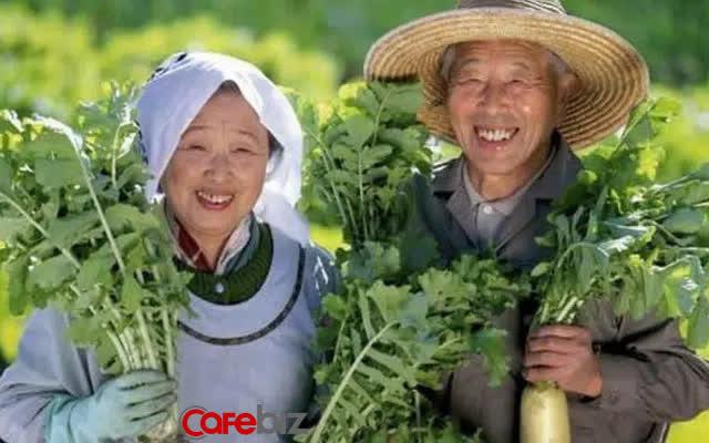 Hệ thống y tế của Nhật Bản đứng đầu thế giới, có 10 phương pháp cực kì đơn giản giúp sống lâu, sống thọ: Nên học hỏi - Ảnh 2.