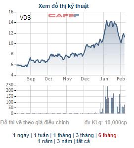 Đầu tư Châu Á vừa trao tay 15 triệu cổ phiếu của Chứng khoán Rồng Việt - Ảnh 1.