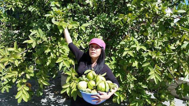 Nữ danh hài giàu nhất Vbiz Việt Hương: Cho thuê 8 căn hộ V.homes, thường xuyên thay đổi xế hộp, mua quá nhiều hột xoàn tới mức không muốn đeo  - Ảnh 2.