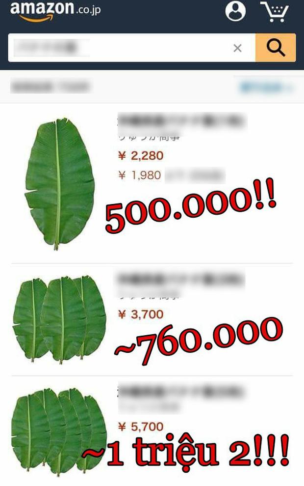 Nghịch lý thú vị: Rau của Việt Nam sang Nhật bị coi là cỏ nhưng những loại cây rẻ bèo lại được bán với giá cao trong siêu thị - Ảnh 15.
