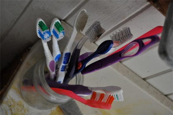 Thùng rác chưa phải vật bẩn nhất trong nhà, chính 5 món đồ gia dụng này mới là ổ bệnh nếu không thay mới thường xuyên - Ảnh 2.