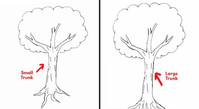 Đặt bút vẽ một chiếc cây, mỗi người cho ra một tác phẩm riêng: Bạn có biết tác phẩm của người hướng nội khác người hướng ngoại ở điểm nào không? - Ảnh 2.