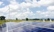 Lướt sóng loạt dự án nghìn tỷ, tiềm lực Nam Việt Green Energy ra sao? - Ảnh 1.