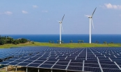 Lướt sóng loạt dự án nghìn tỷ, tiềm lực Nam Việt Green Energy ra sao? - Ảnh 2.