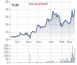 PV Power bán khớp lệnh gần 20 triệu cổ phần PV Machino kể từ 12/3 - Ảnh 1.