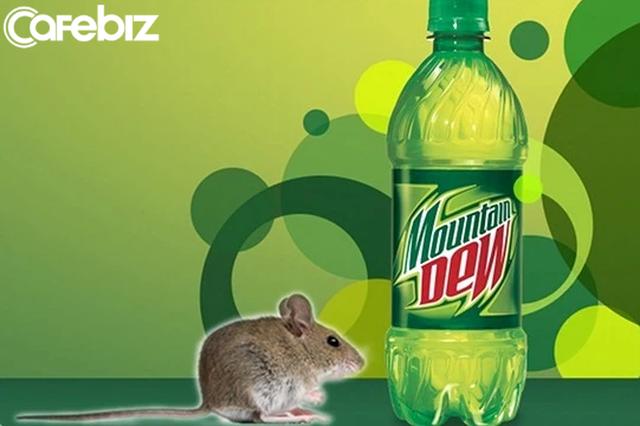 Chuột chết trong chai nước và bài học xử lý khủng hoảng nhớ đời của Pepsi: Thắng kiện ngoạn mục nhưng bị khách hàng quay lưng vì 'viên đạn bạc' - Ảnh 2.