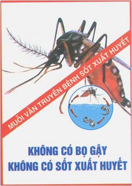 2 trường hợp tử vong do sốt xuất huyết, bất kì ai cũng cần biết những điều nên và không nên làm khi bị sốt xuất huyết - Ảnh 15.