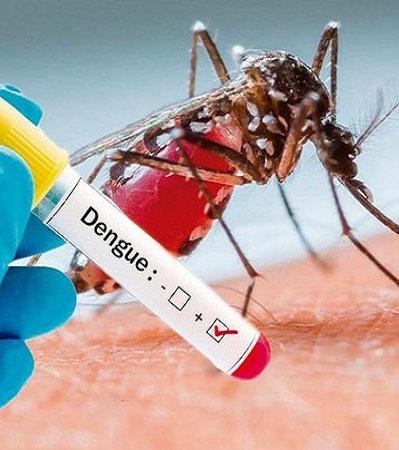 2 trường hợp tử vong do sốt xuất huyết, bất kì ai cũng cần biết những điều nên và không nên làm khi bị sốt xuất huyết - Ảnh 3.